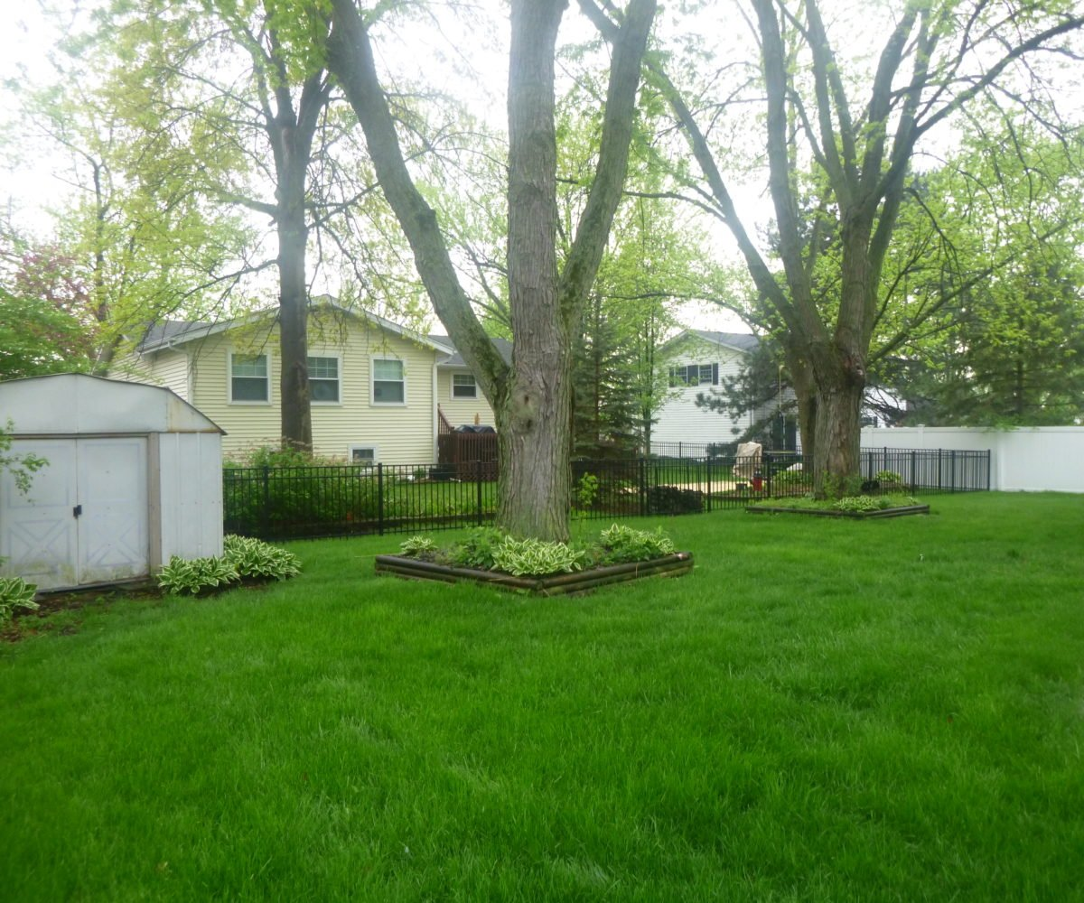 2921 Williams Drive Woodridge IL Back Yard